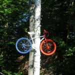 Work of Art: Painted bike suspended in a tree