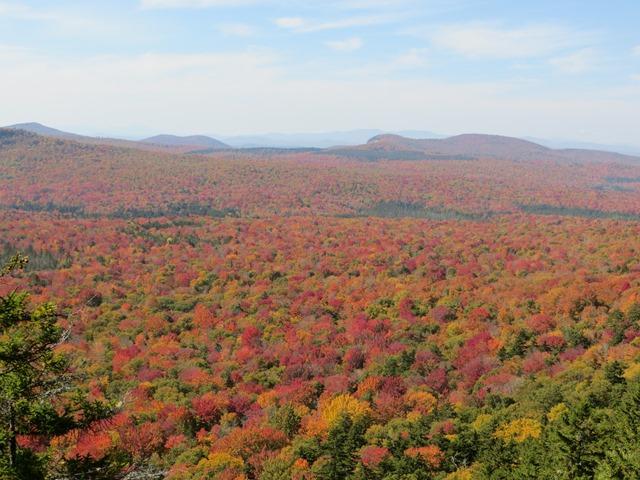 Northeast Kingdom Foliage