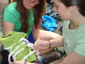 Student practices splinting an upper body injury