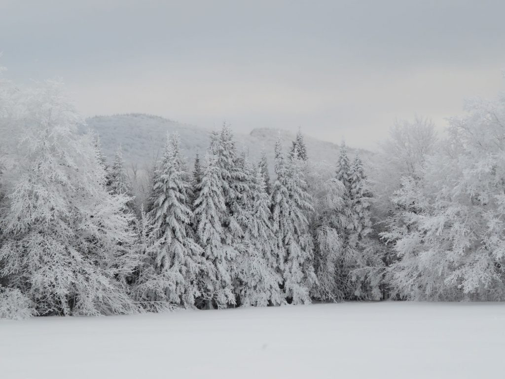 Winter in Westmore, Vermont